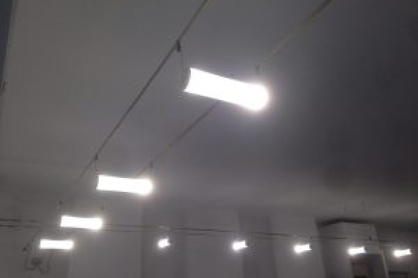 tesate-led-e1480259016508-300x225B37CC1F3-E0C2-B346-0725-84D19EE24C95.jpg